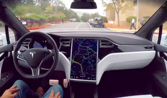 Tesla driver